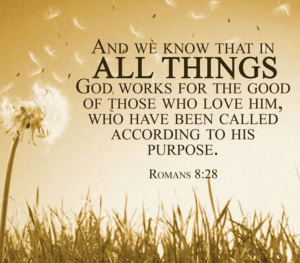 The Sacramental Life - Day 332 - Romans 8-28-30 - Work Together For Good - Growing As Disciples