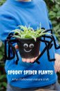 spooky spider plants fun halloween nature craft