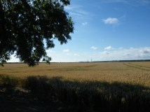 Looking towards the Lincs Wolds