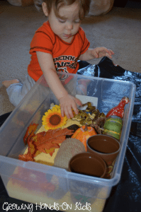 fall cornmeal sensory box for toddlers and preschoolers
