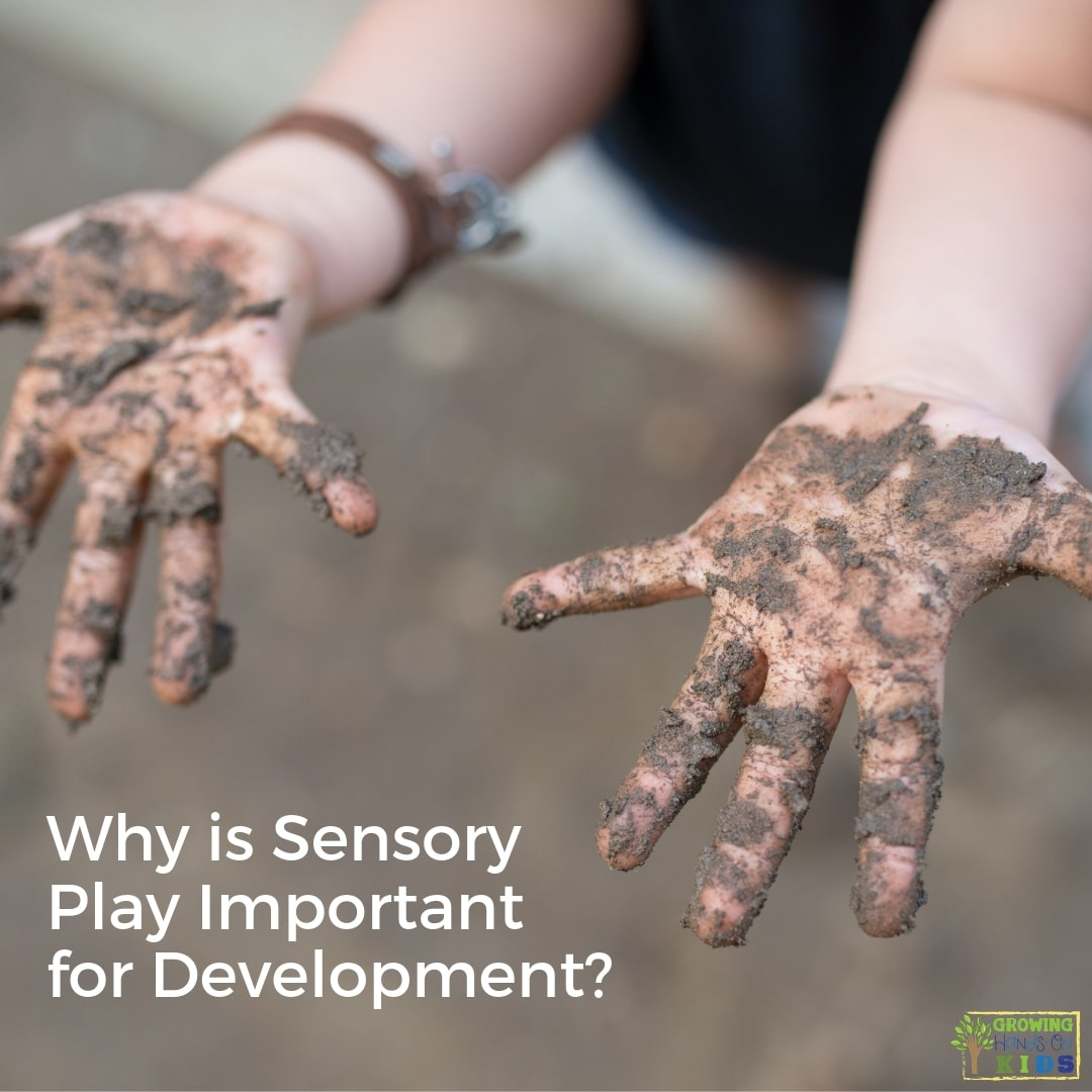 why sensory play is important for development