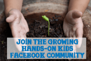 Growing hands-on Kids Facebook Community.