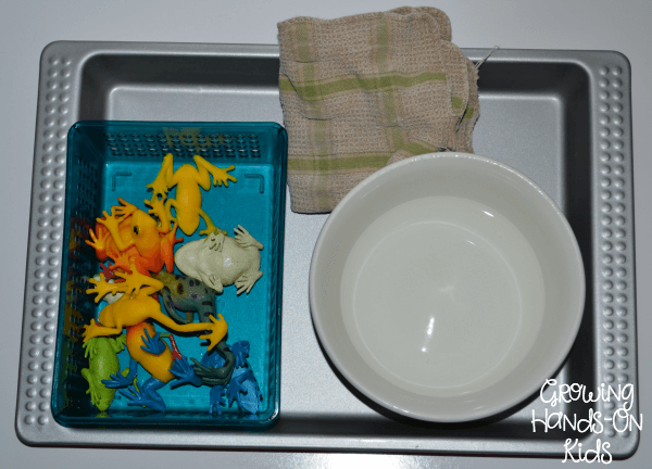 Frog washing for practical life activity.