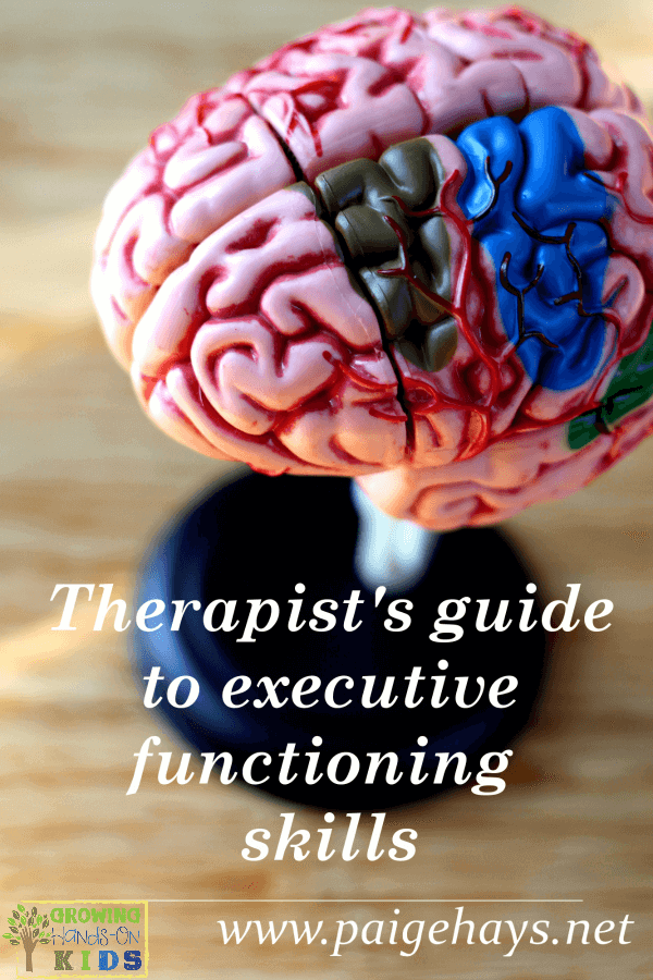 therapist-guide-to-executive-functioning-skills