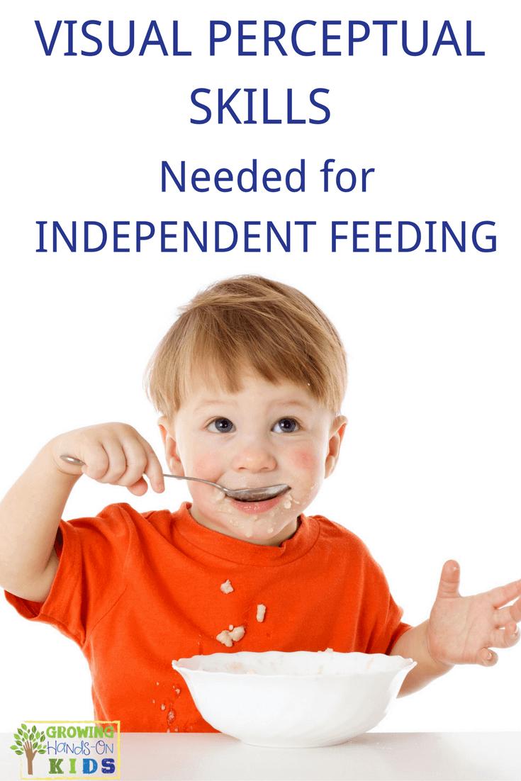 visual perceptual skills needed for independent feeding