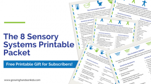 The 8 sensory systems printable packet.