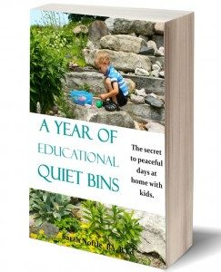 A year of educational quiet bins.