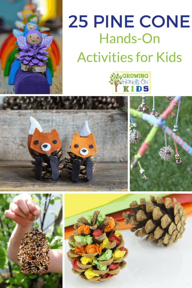 25 pine cone hands-on activities for kids