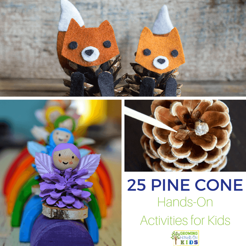 25 Pine cone hands-on activities for kids.