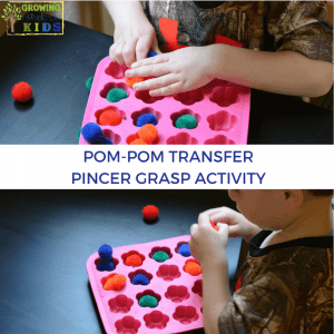Pom-pom transfer activity for pincer grasp.