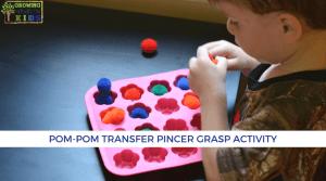 Pom-pom transfer activity for pincer grasp.
