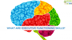 What are the executive functioning skills? Plus get a free printable on Executive Function.