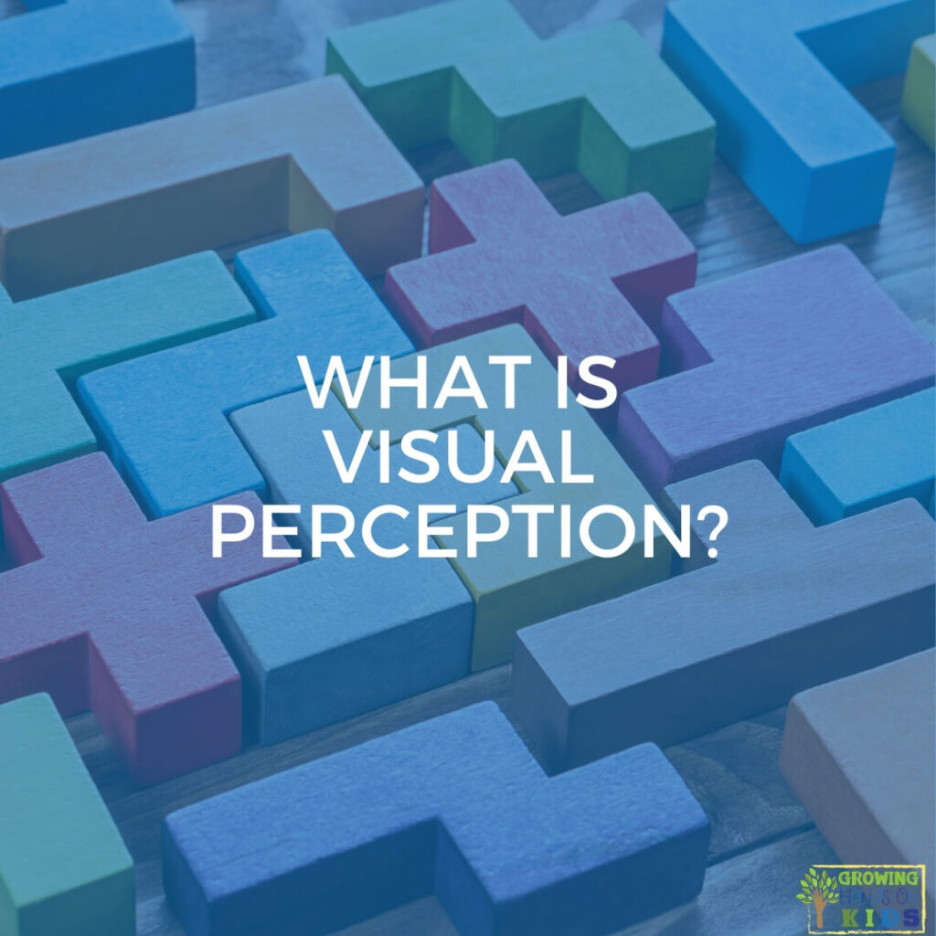 "random puzzle pieces fitted together. Blue overlay with white text that says ""What is visual perception?"""