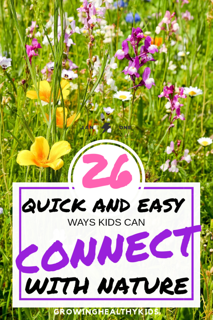 Quick and easy ways to connect with nature