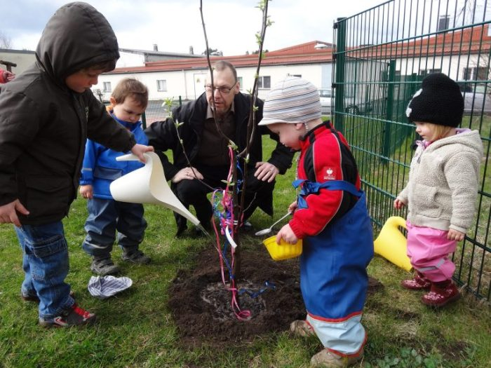 Tools and Gardening with kids