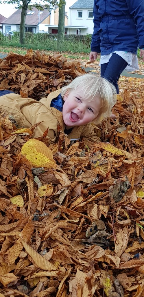 Throwing leaves is a great autumn activity see what else