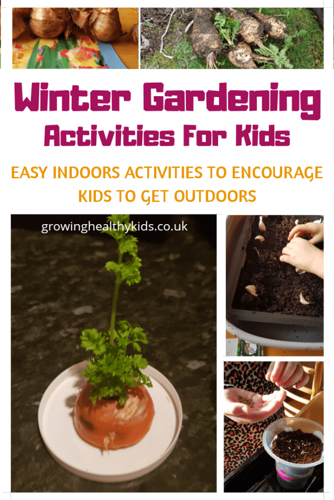 These simple activities for kids to try over wonter will introdice them to a world of gardening, wildlife and edibles never known to them before.