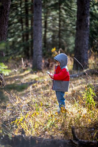 Apps for kids, child in forest
