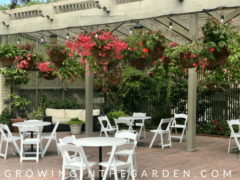 Sherman Library and Gardens #shermangarden #garden #gardentour #flowergarden #coronadelmar #garden #destinationgarden #newportbeach