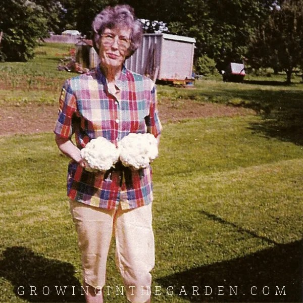 Angela Judd - growinginthegarden.com