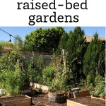 Raised Bed Garden Design Tips Growing In The Garden