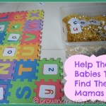 Help The Babies To Find Their Mamas