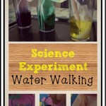 Science Experiment – Water Walking