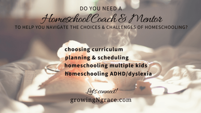 homeschool coach | homeschool consultant | homeschool mentor | help with homeschooling