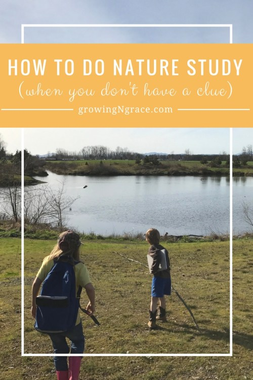 how to do nature study when you're not an expert | nature study resources and tips