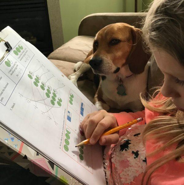 homeschooling schedule | homeschooling third grade | math mammoth