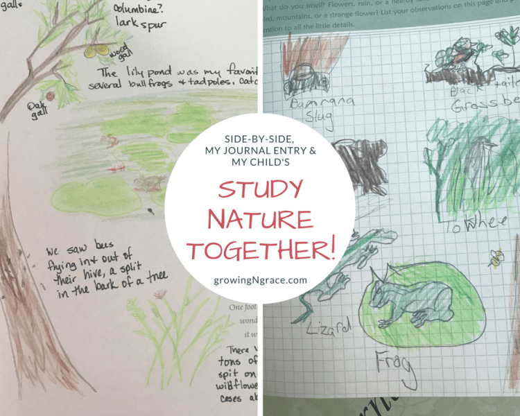 nature journal | nature study | whole-family learning