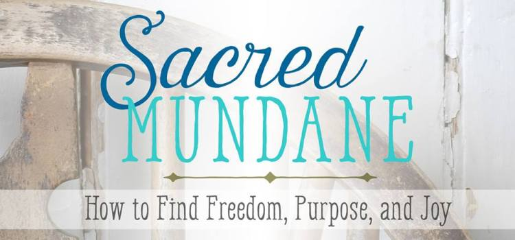 finding significance | Sacred Mundane review