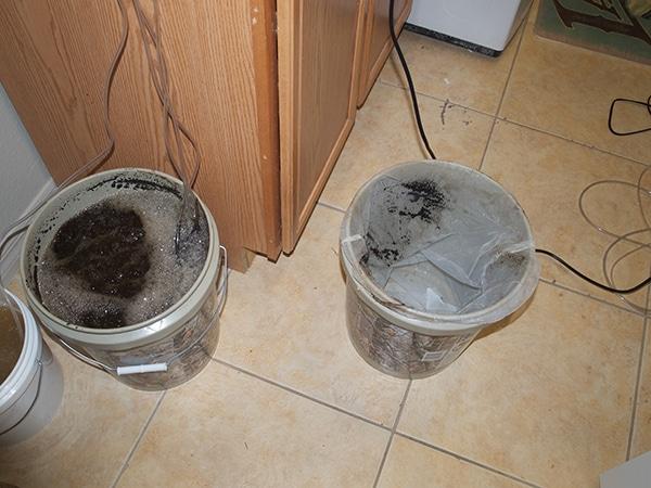 preparing to strain compost tea