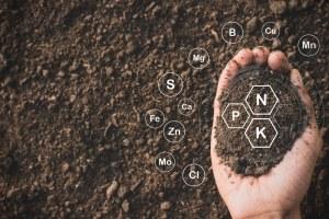 improved soil improved health