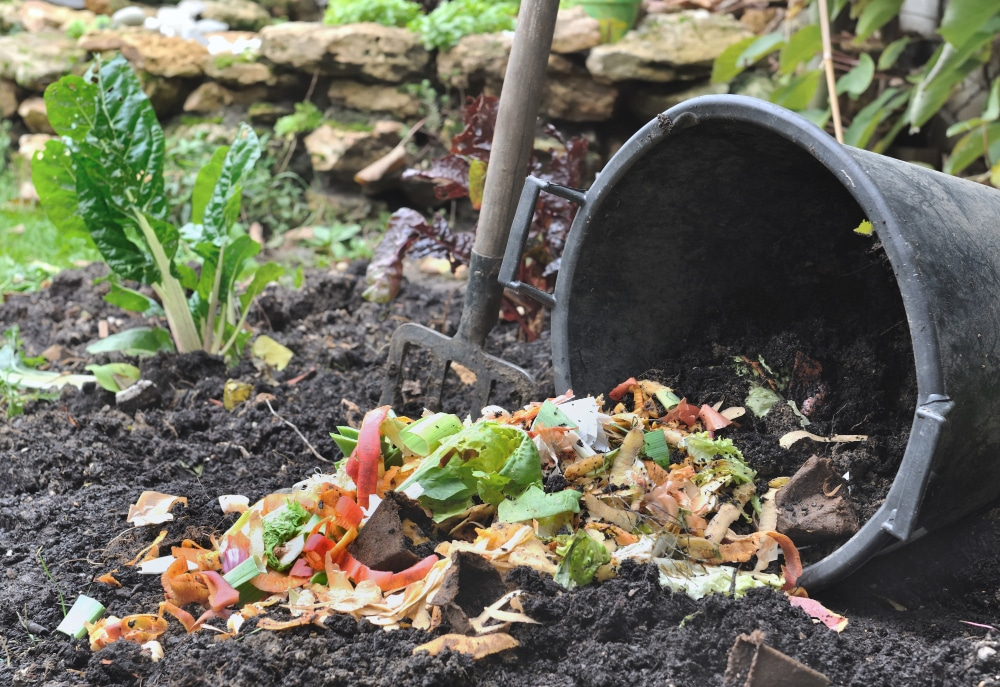 community composting info session