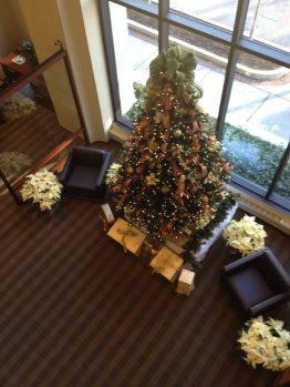 Holiday Interior Landscaping