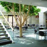 Lincoln-North-cafeteria2_300