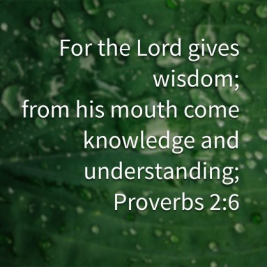 Lord gives_0719