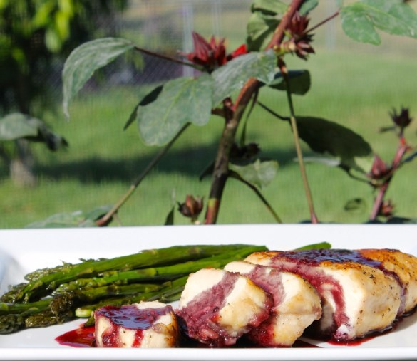 Nature raised chicken with rosa de jamaica sauce hibiscus #shop