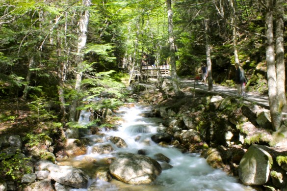 trail to Flume Gorge in Franconia Notch park