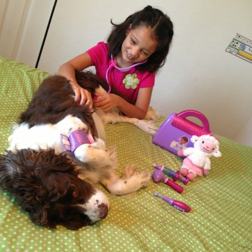 playing doctor with dog