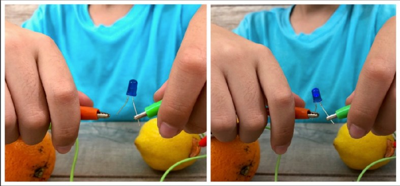 Fruit Battery and Other Fun Hands-On STEM Projects for Kids