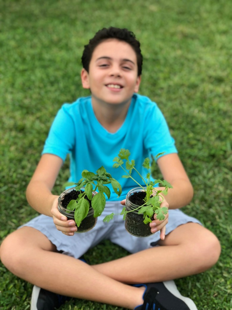 Growing Your Own Herbs and Other Fun Hands-On STEM Projects for Kids