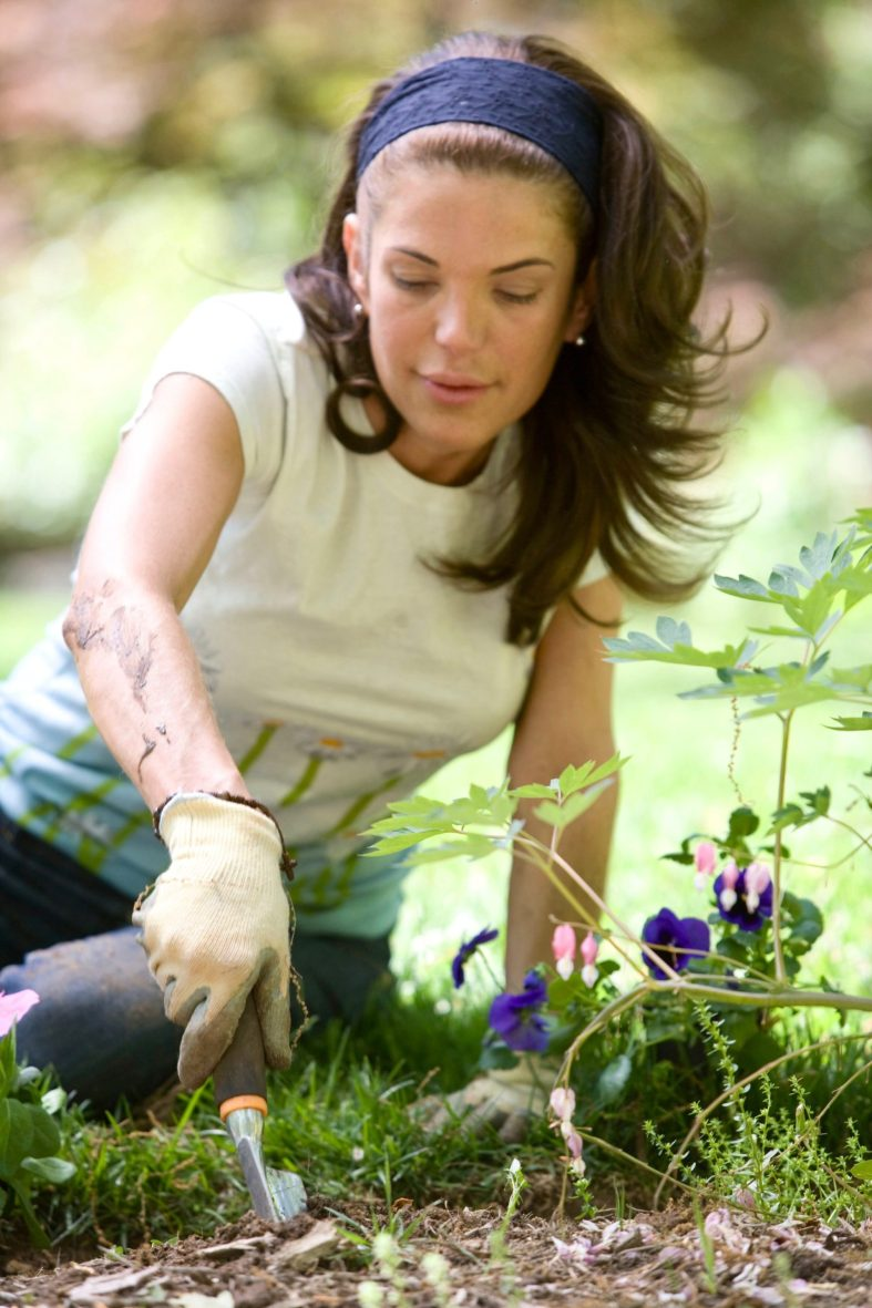 Getting vitamin D while gardening to boost your immune system