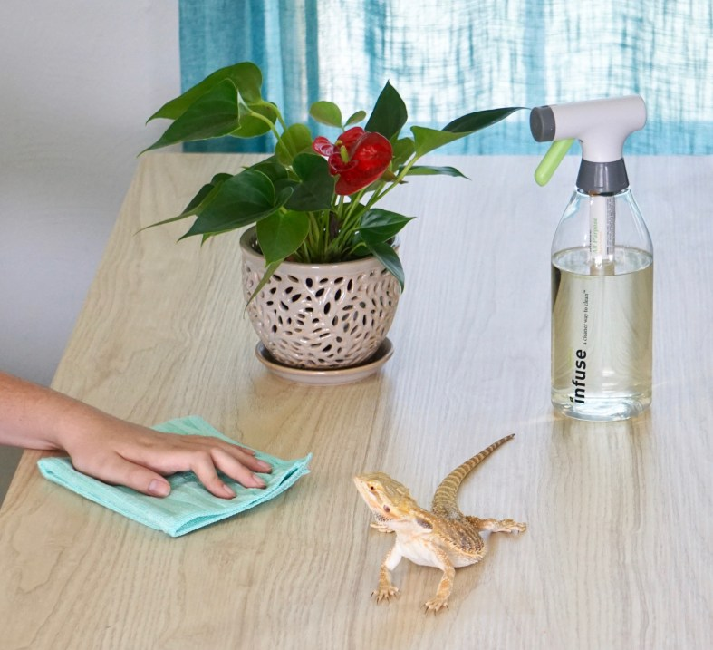 Cleaning products safe for bearded dragons