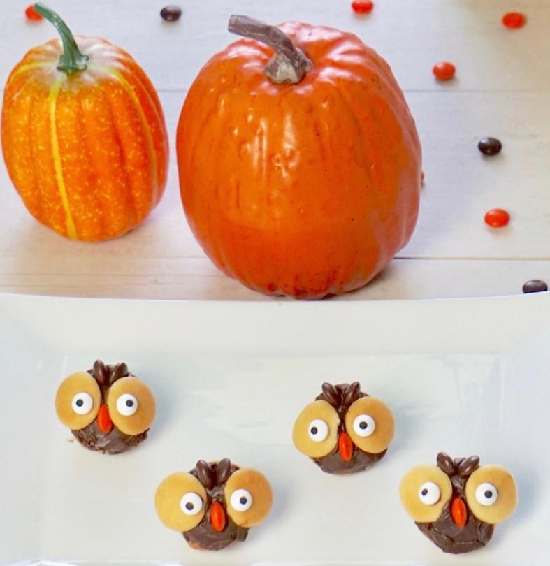 Cute owl treats