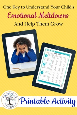 Tired of all the drama? This fun activity will help your child develop insight so they can better manage their emotions. Click to get your copy.