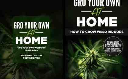 Advertise on Growing Weed Indoors