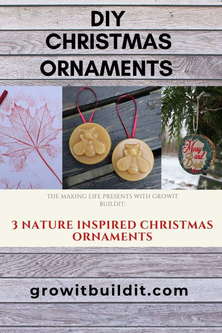 Nature Inspired Christmas Ornaments How To Make 3 Diy