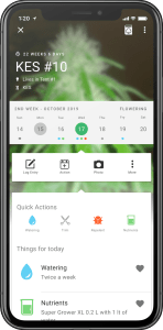 Grow with Jane App Home view